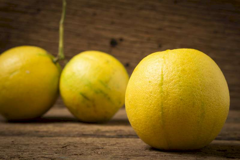 La bergamote en parfumerie, un agrume de qualité inédite.