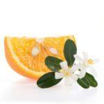 La fleur d'oranger en parfumerie